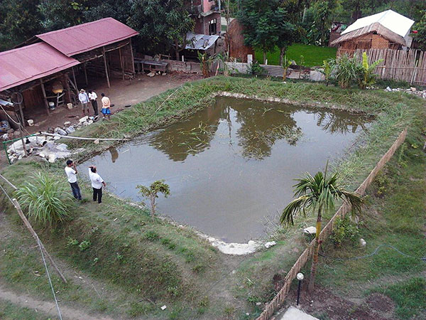 CWON aquaculture project - fishpond